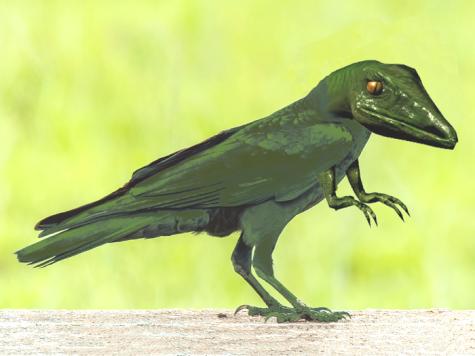 DinoCrow
